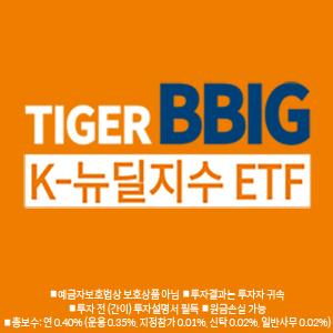 미래에셋자산운용 TIGER - BBIG